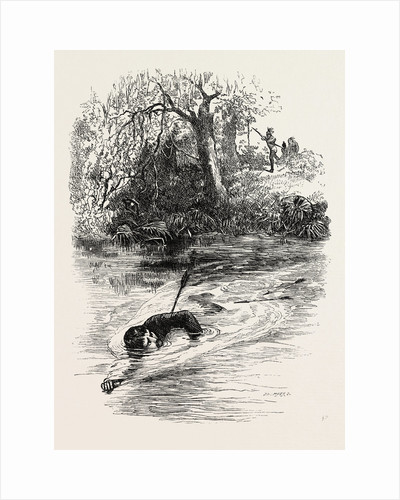 A Race for Life; Swimming Away from an Indian Shooting Arrows by Anonymous