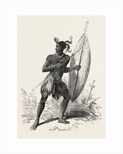Zulu Warrior, Kaffraria, South Africa by Anonymous