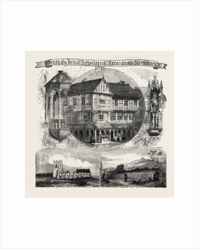 Meeting of the British Archaeological Association at Shrewsbury, Tudor Houses and Shops by Anonymous