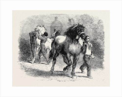 Sketch from the Horse Fair by Anonymous