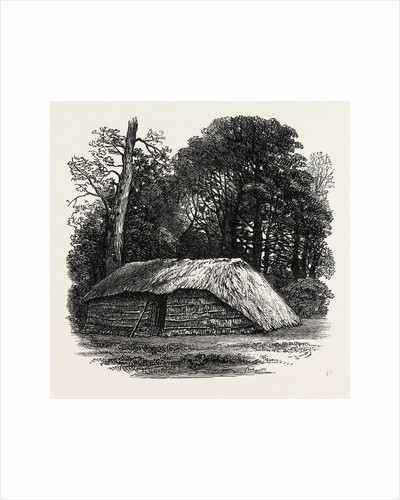 Facsimile of the Hut Built for Dr. Livingstone to Die in. 1874 by Anonymous