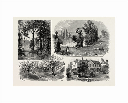 Sketches in Waterlow Park, which Has Been Presented to the Public by Sir Sydney Waterlow by Anonymous