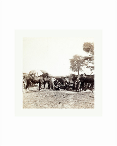 American Civil War: Army Blacksmith and Forge, Antietam, Sept., 1862, Union Army Blacksmith at Work Surrounded by Horses and Other Men at General Mcclellan's Headquarters in Antietam by Anonymous