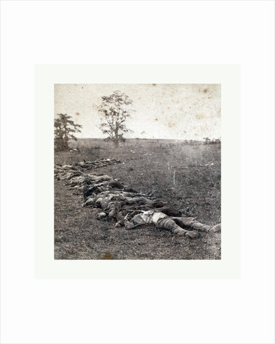 American Civil War: Gathered Together for Burial after the Battle of Antietam, Dead Bodies on the Ground by Anonymous