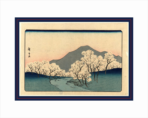 Grove of Blossoming Cherry Trees with Mountain in the Background. by Anonymous