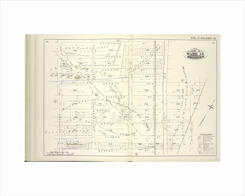 Map bound by Stanhope St., Wyckoff Ave., Greene Ave., St. Nicholas Ave., Magnolia St., Hamburg St; Including Himrod St., Harman St., Bleecker St., Ralph St., Grove St., Linden St., Myrtle Ave., Knickerbocker Ave., Irving Ave., New York by Anonymous