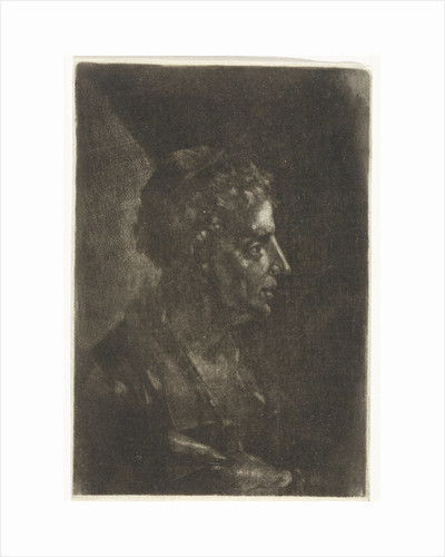 Bust of a man in profile by Justus van den Nijpoort