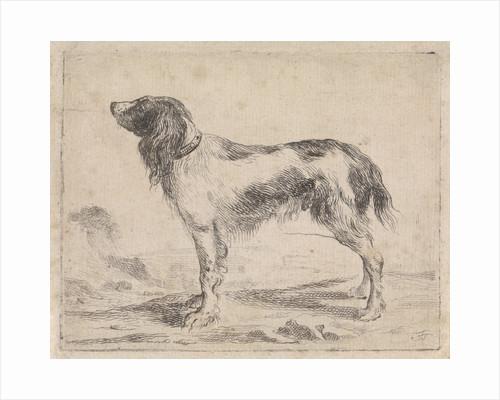 Standing dog by Jacob Toorenvliet