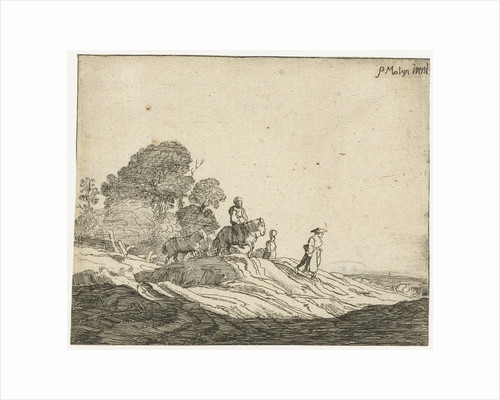 Landscape with horses by Pieter de Molijn
