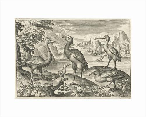 Five birds including spoonbill by Nicolaes de Bruyn