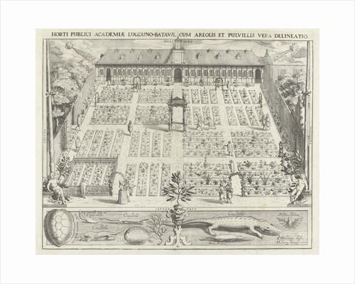 Hortus Botanicus of Leiden University by Andries Clouck