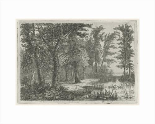 forest scene with a natural pond with ducks by Hermanus Jan Hendrik van Rijkelijkhuysen