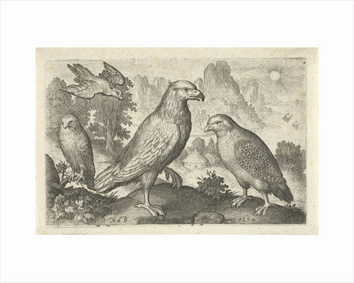 Eagle and other birds of prey by Nicolaes de Bruyn