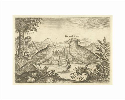 Two birds in a landscape by Adriaen Collaert