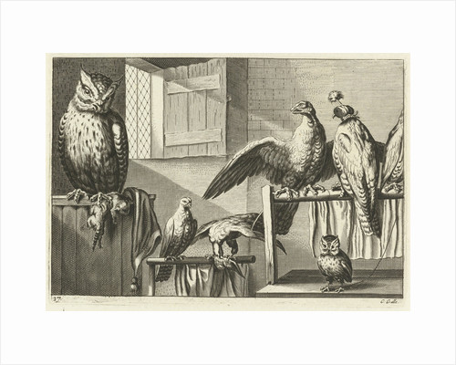 Falcons and owls in a barn by Francis Barlow