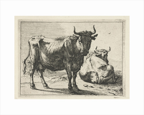 A standing and a lying cow by Paulus Potter