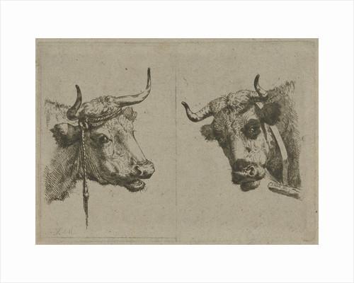 Two cows heads by Jan Kobell III
