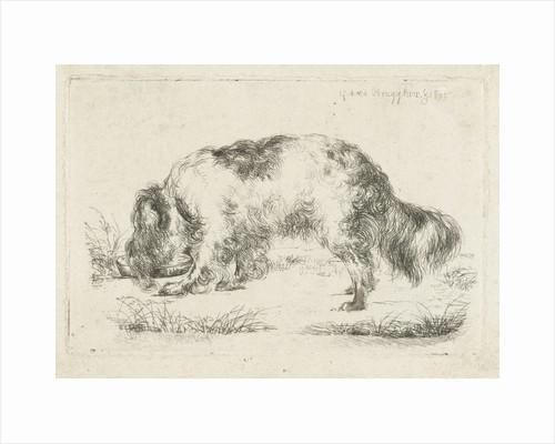 Drinking dog by Guillaume Anne van der Brugghen