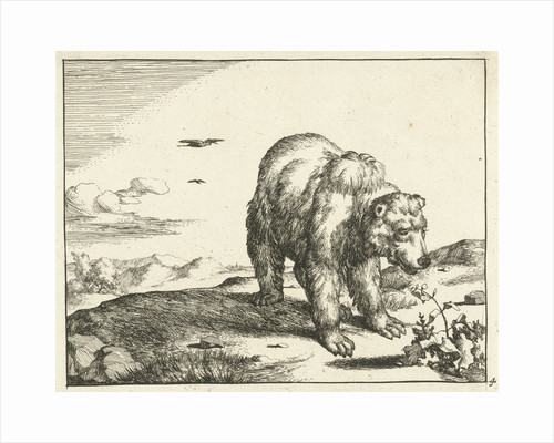 Standing Bear at plant by Marcus Gerards I