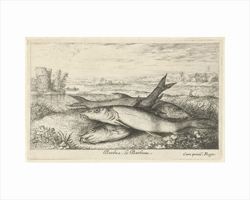 Three barbs on a riverbank by Lodewijk XIV