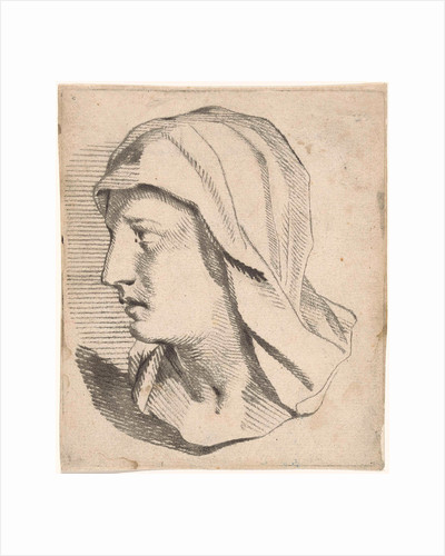 Female Bust, with shoulders drooping veil by Jan Snellen