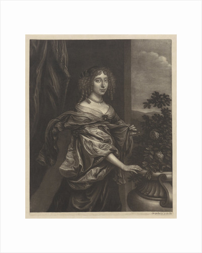 Portrait of a woman with a rose bush by Wallerant Vaillant