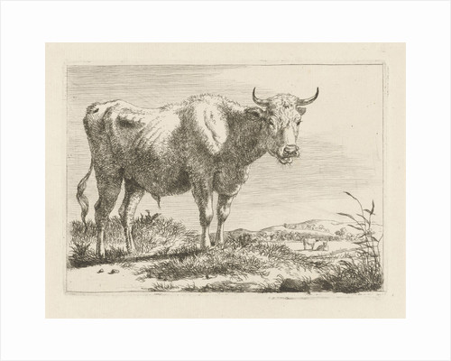 Standing bull by Pieter Gerardus van Os