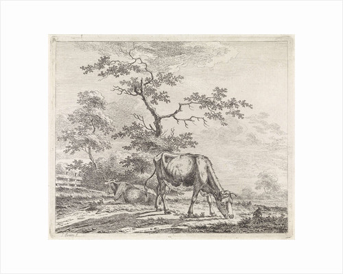 landscape with grazing cow by Pieter Janson