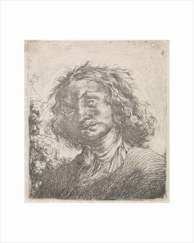 Portrait of a man with long hair by Carel de Moor II