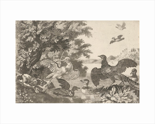 Waterfowl and a dog, Melchior d' Hondecoeter by Monogrammist RP