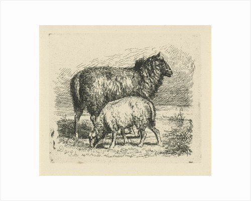 Black Sheep with lamb by Dirk van Lokhorst