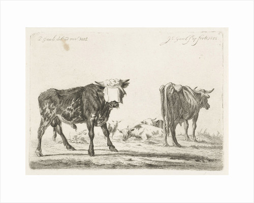 Blindfolded bull to herd cattle by Jacobus Cornelis Gaal
