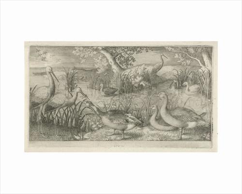 Waterfowl in a pond by Jan van Londerseel