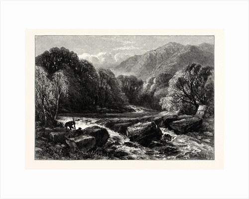 On the River Lledr by Anonymous