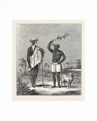 The Sheep-Eater of Hindostan: The Sheep-Eater and His Gurw, India by Anonymous