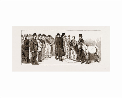 Annual Meeting Of The Golden Lane Costermongers' Mission: The Earl Of Shaftesbury Reviewing The Donkeys, 1875 by Anonymous