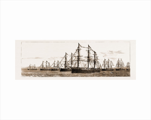British And Foreign Ships Of War In The Bay Celebrating Her Majesty's Birthday, 1881 by Anonymous