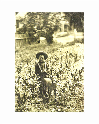 Child with dog standing in a field with crops by Anonymous