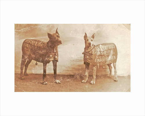 Portrait two dogs toymaker with advertising copy for perfumeries by Anonymous