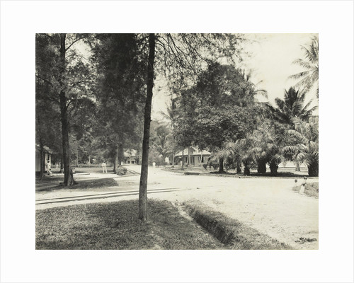 Avenue with trees, houses and Europeans in Indonesia by Carl J. Kleingrothe