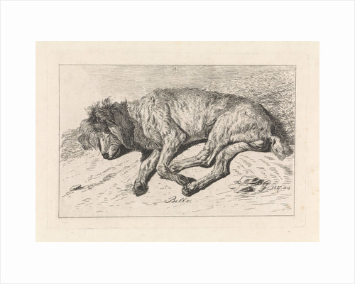 Sleeping dog, George Jooss by Johannes Mock