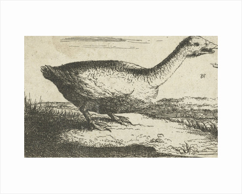 Landscape with wild goose by Landscape with wild goose