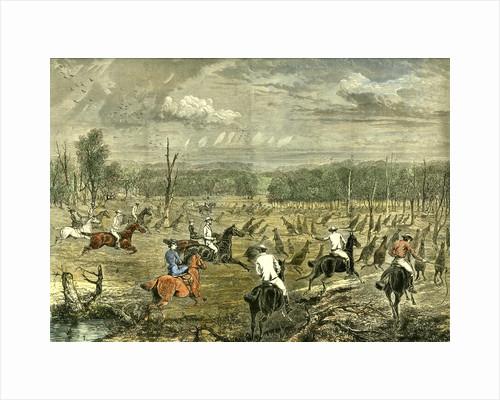 Australia Kangaroo Hunt 1880 by Anonymous