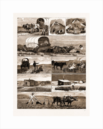 Scenes From An Emigrant's Life In Manitoba, Canada, 1883 by Anonymous