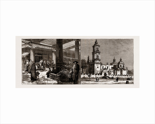 On The Mexican National Railway, 1886 by Anonymous