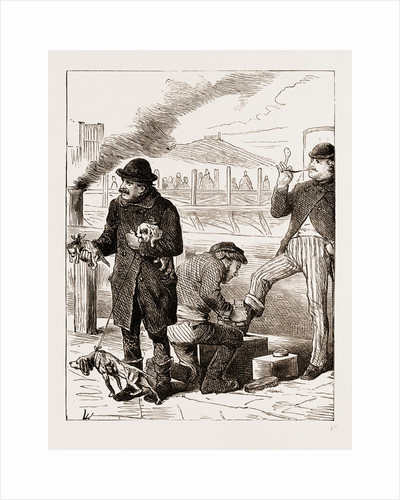 Shoeblack And Dog Dealer, Vienna Engraving 1873 by Anonymous