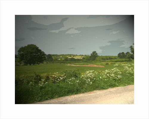 Summer Countryside viewed from Brun Lane by Sarah Smith