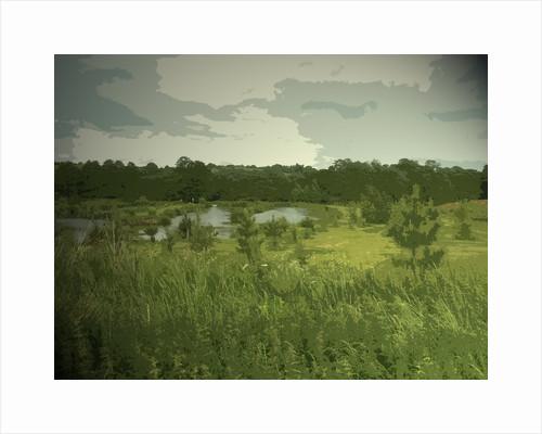 Fishing Lakes near Ednaston by Sarah Smith