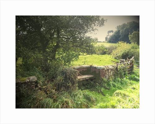 A Quaint Stone Bench by Sarah Smith