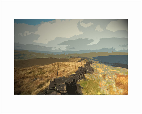 Ridge between Cats Tor and Pym Chair by Sarah Smith